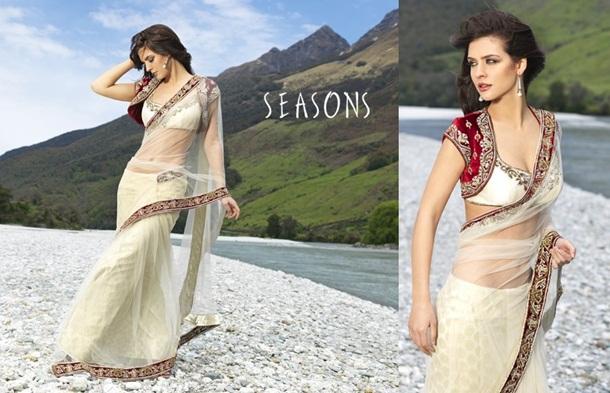 designer-saree-collection-2014-by-seasons- (11)