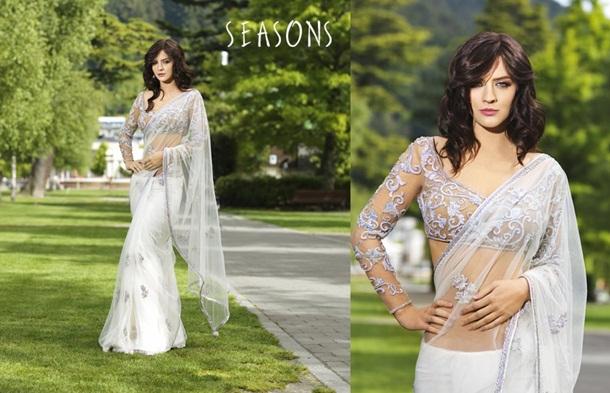 designer-saree-collection-2014-by-seasons- (2)