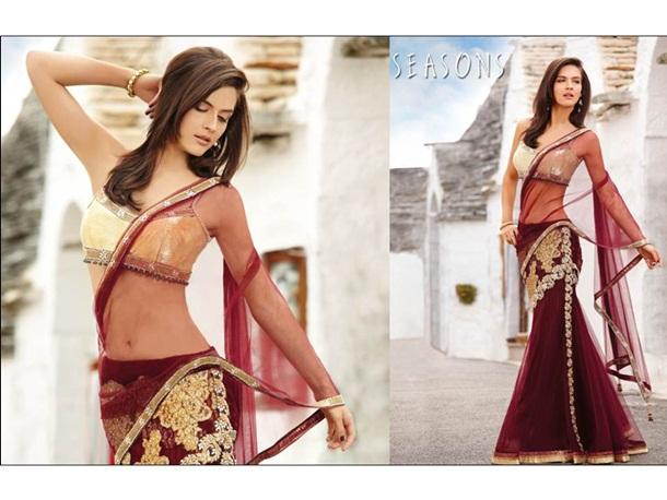 designer-saree-collection-2014-by-seasons- (8)