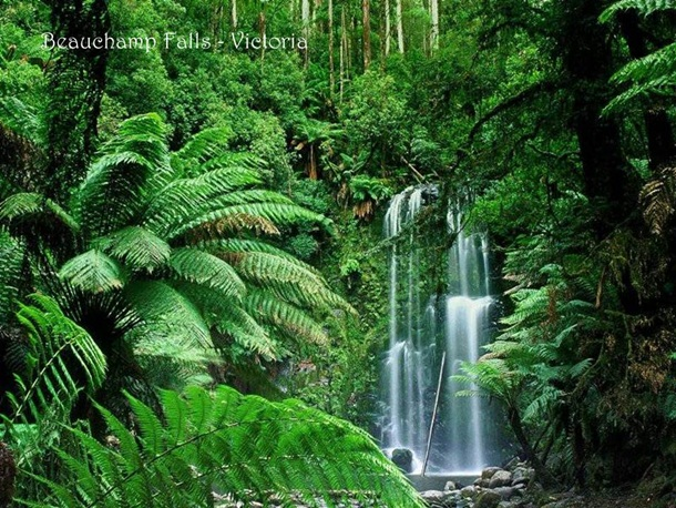 places-to-see-in-australia-36-photos- (10)