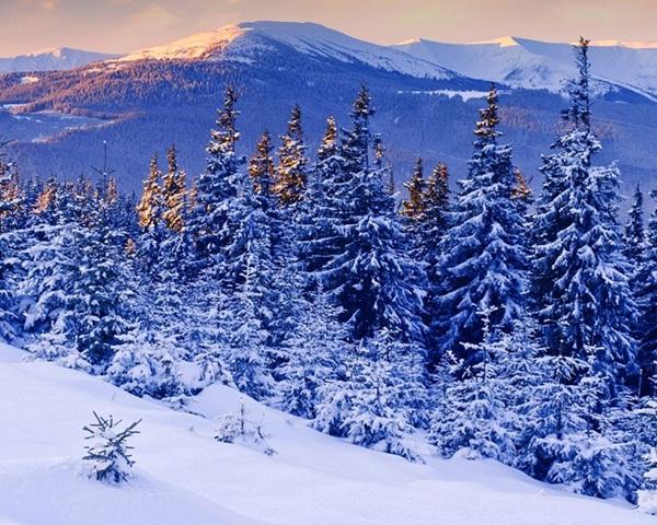 26-winter-photos- (2)