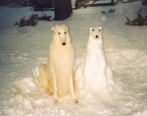 fun-with-snow- (2)