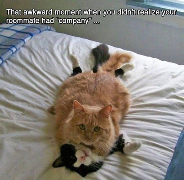funny-awkward-situation- (12)
