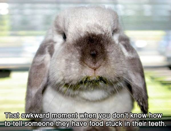 funny-awkward-situation- (14)