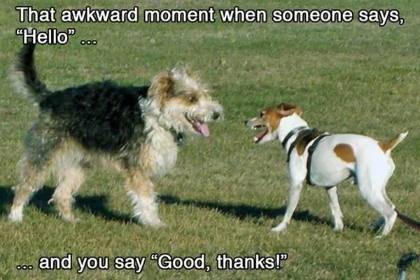 funny-awkward-situation- (4)