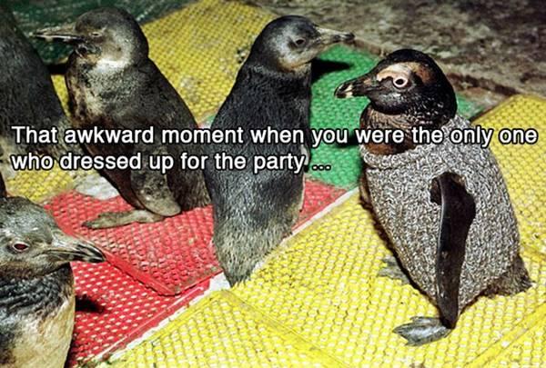funny-awkward-situation- (5)