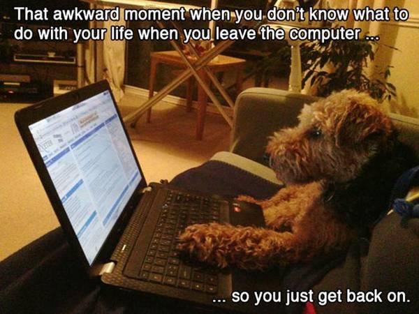 funny-awkward-situation- (7)