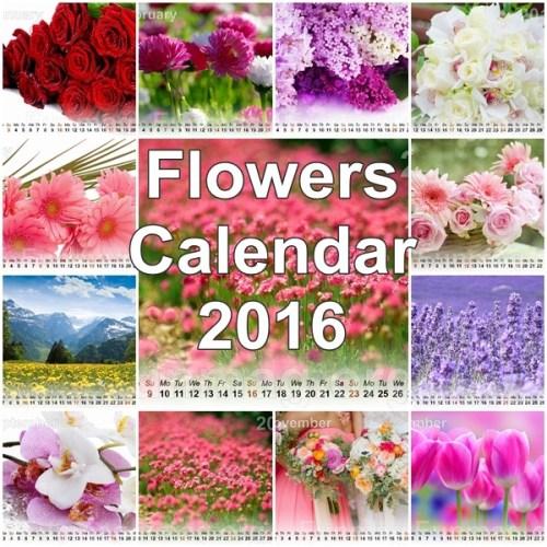 flowers-calendar-2016-