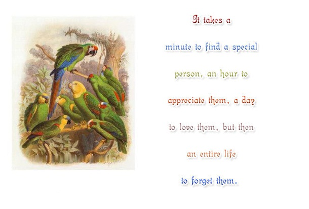 life-is-a-journey-quots-about-life- (7)