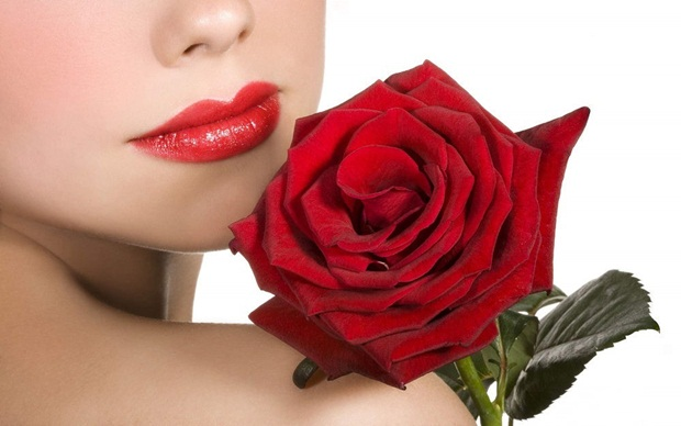 red-rose-flower- (1)