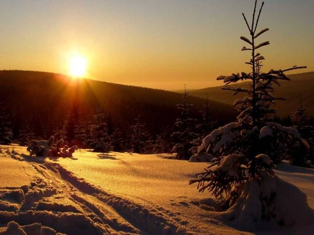 best-nature-pictures-22-photos- (8)