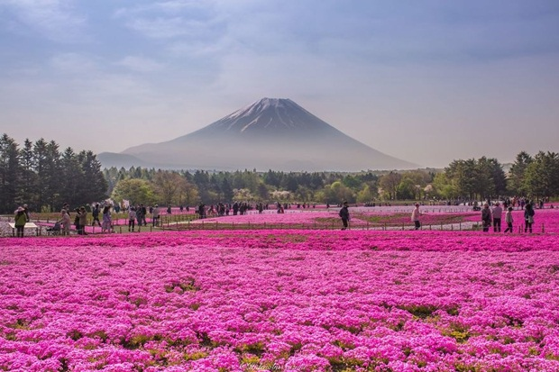 beautiful-places-to-visit-in-japan- (4)