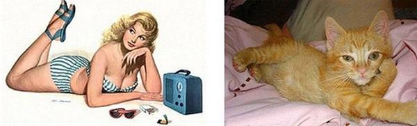 cats-imitate-the-girls- (20)
