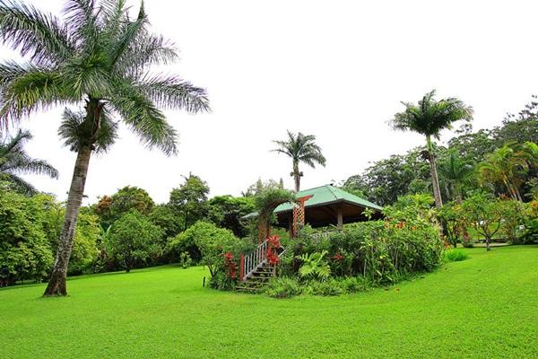 maui-gardens- (5)
