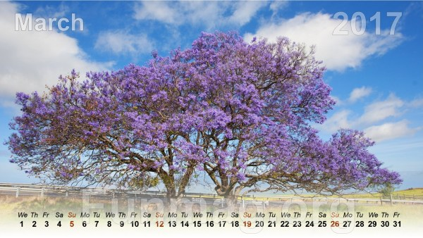 nature-desktop-calendar-2017- (4)