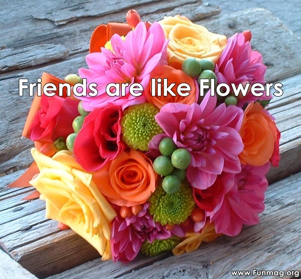 friends-are-like-flowers-friendship-cards- (1)