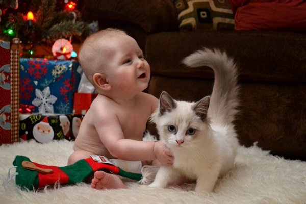 pictures-of-children-and-animals- (15)