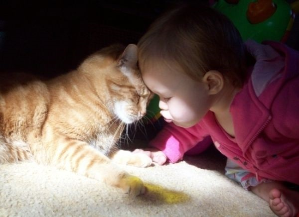 pictures-of-children-and-animals- (26)