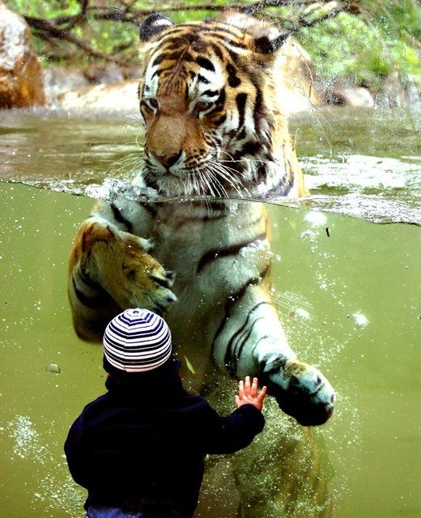 pictures-of-children-and-animals- (32)