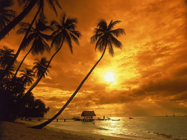 beach-sunset-wallpaper-17-photos- (10)