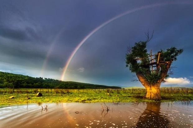 double-rainbow-photos- (13)