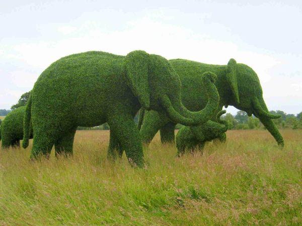 topiary-art- (12)