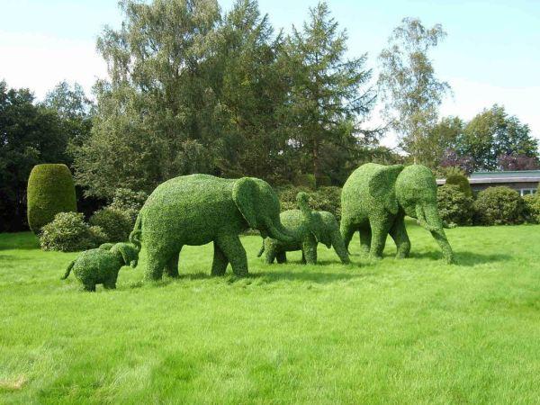 topiary-art- (9)