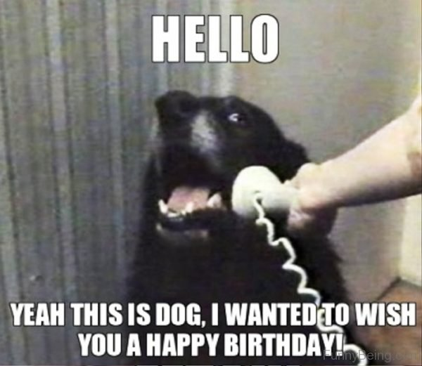 48 Amazing Birthday Memes