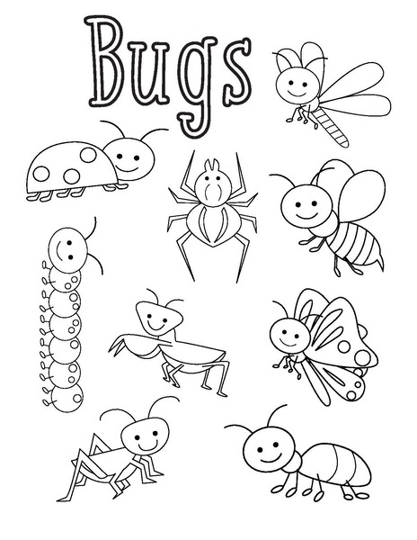 bugs coloring pages « funnycrafts