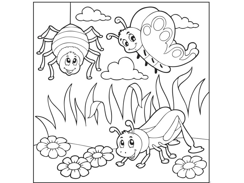 coloring pages bugs « Preschool and Homeschool