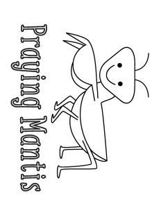 coloring pages praying mantis « Preschool and Homeschool