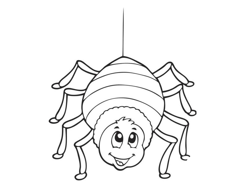 coloring pages spider « Preschool and Homeschool