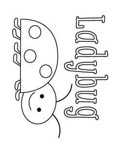 ladybugs « Preschool and Homeschool