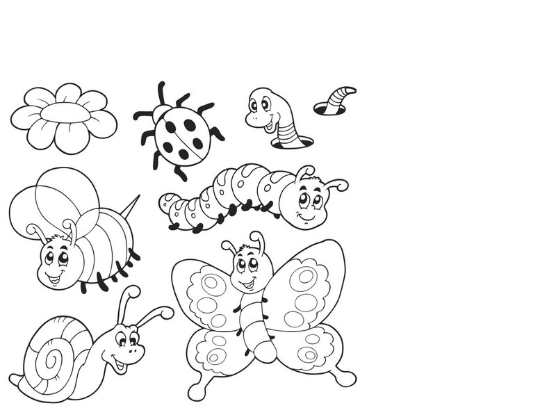 bugs coloring pages cool (3) « Preschool and Homeschool