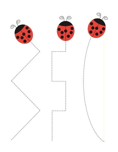 preschool ladybug tracing line « funnycrafts