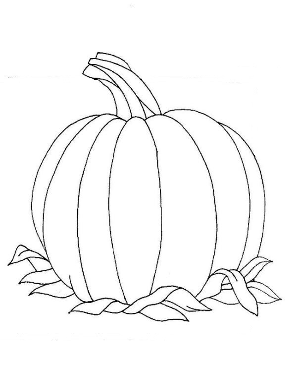orange learning coloring pages (14) « Preschool and Homeschool