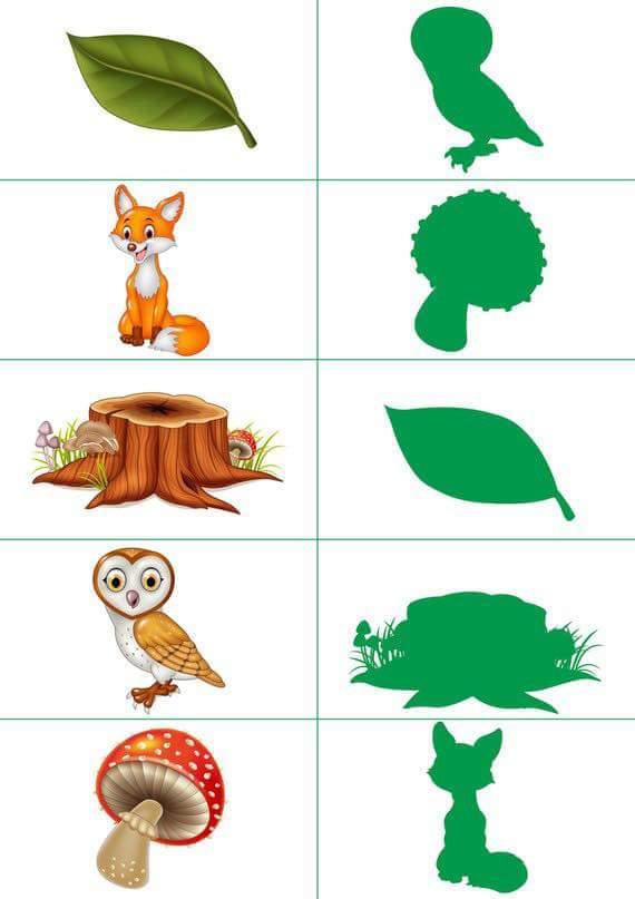 Nature Shadow Matching Sheets Preschool And Homeschool