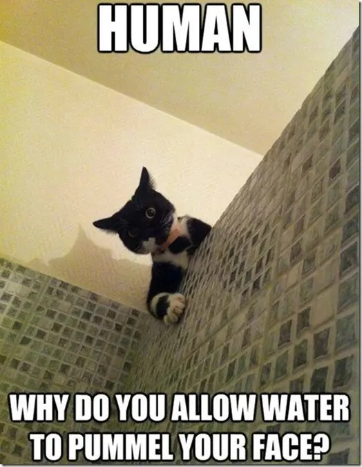 Why do you allow water to pummel your face?