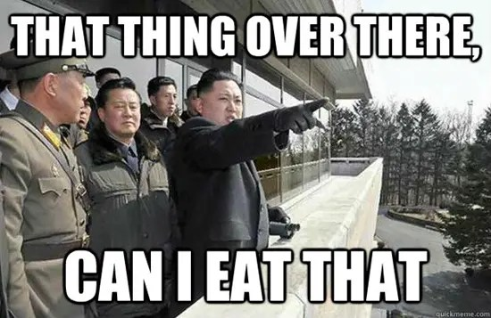 North Korea's Kim Jong-un meme - That thing over there, can I eat that?