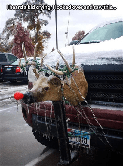 Oh, poor Rudolph