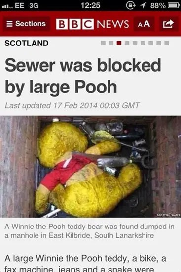 Sewer blocked by large Pooh