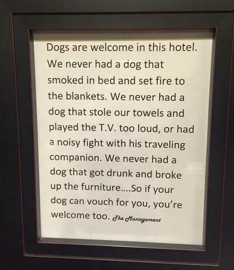 Dogs welcome at our hotel…  People too.