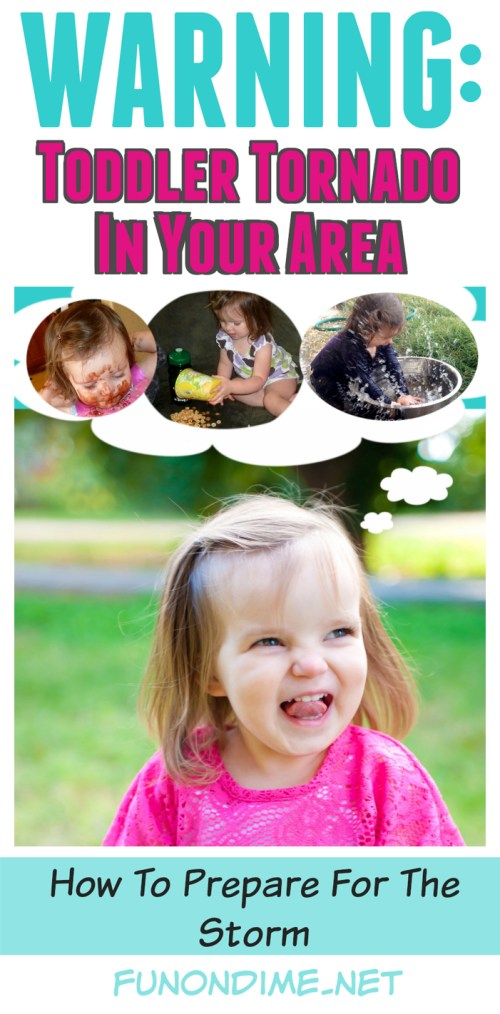 Epic Messes - Toddler Survival Tips -  #ad #EurekaPower