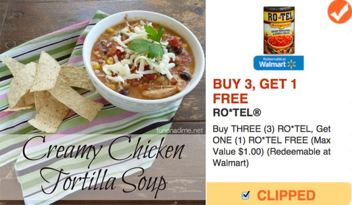 Rotel Coupon and Cream of Chicken Soup Recipe