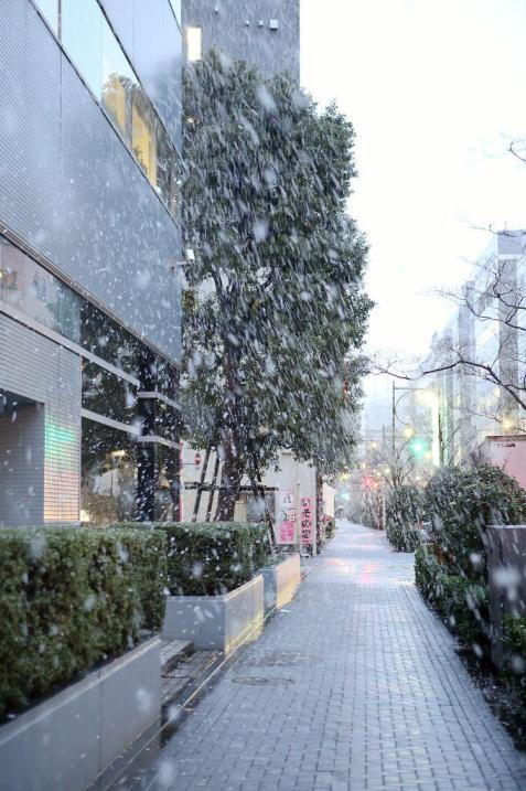 TokyoTower_20141120_19