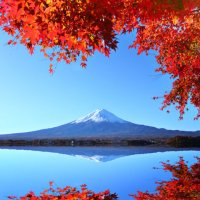 in-images-japans-autumn-colours-insider-journeys-1474726175g8kn4