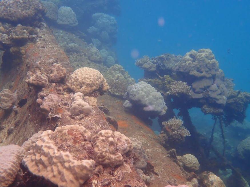 帛琉山中湖