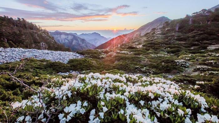 台灣五嶽#2 雪山