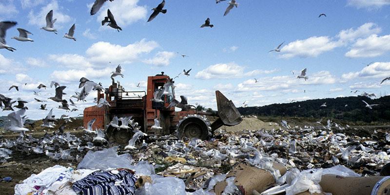 Humanidade Produz Mais De 2 Bilhões De Toneladas De Lixo Por Ano