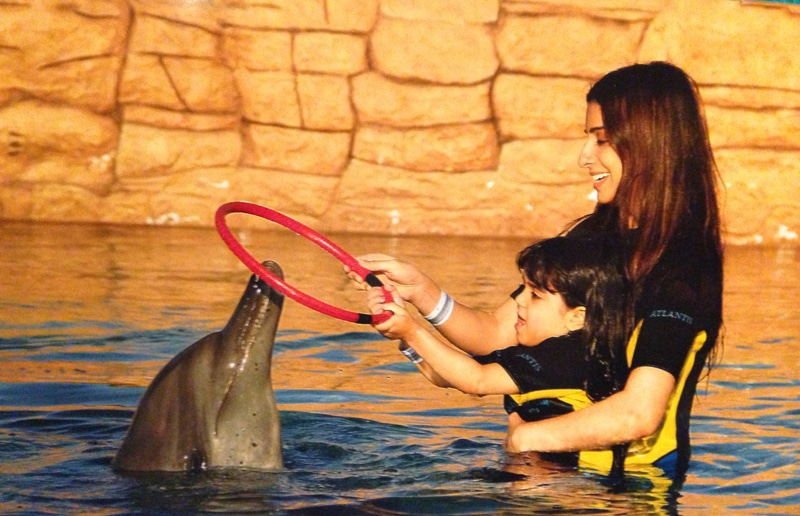 swim with the dolphins encounter dubai with kids